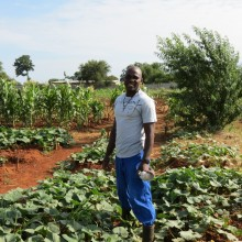 Cabbage Patch, Farm